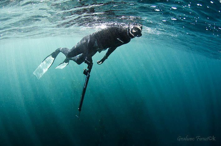 Looking into the abyss #spearfishing #fishing www.xtremecharters.co.za
