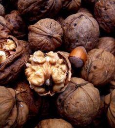 Mangiare noci annulla gli effetti del cibo spazzatura nell'organismo | Ambiente Bio | Bloglovin'
