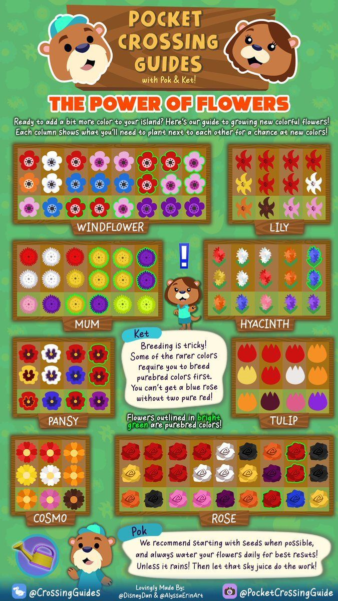 Pin On Animal Crossing New Horizons