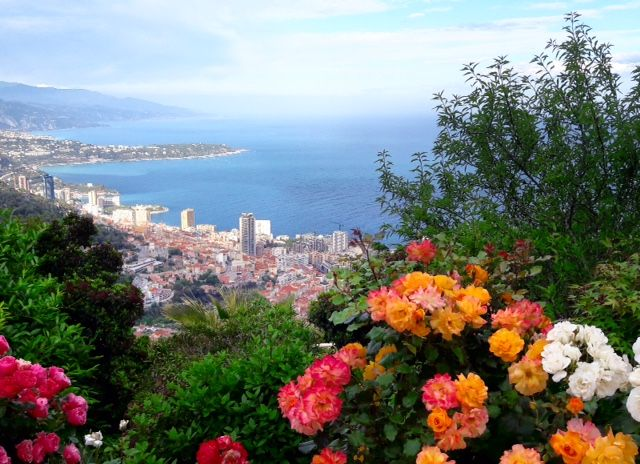 This fabulous view is love at first sight!🌺 #france #frenchriviera #cotedazur #monaco #montecarlo #monmonaco #capdail #summer #instatravel #skyporn #flower #coast #italia #luxury #lifestyle #luxurious #prestige #photography #picoftheday #roquebrune #odeon #sea #holiday #франция  #монако #монтекарло #лето #французская #ривьера