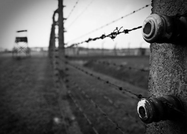 Super Risparmio: Auschwitz e Miniera di Sale Wieliczka