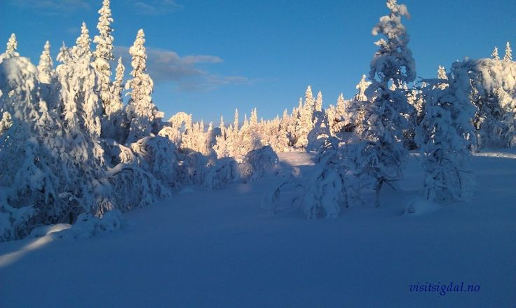 Eggedalsfjellet, Buskerud. Eggedal Mountain, 2 hours from Oslo, Norway. Visitsigdal.no