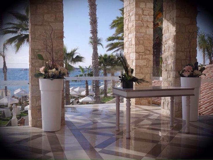 Alexander The Great Beach Hotel (Paphos, Cyprus) - Hotel Reviews - TripAdvisor
