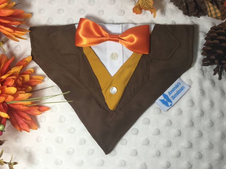 Chocolate Brown dog tuxedo with optional vest and bow tie, Collar Bandana, dog or cat. small, med or large dogs by AmandasBandanas on Etsy