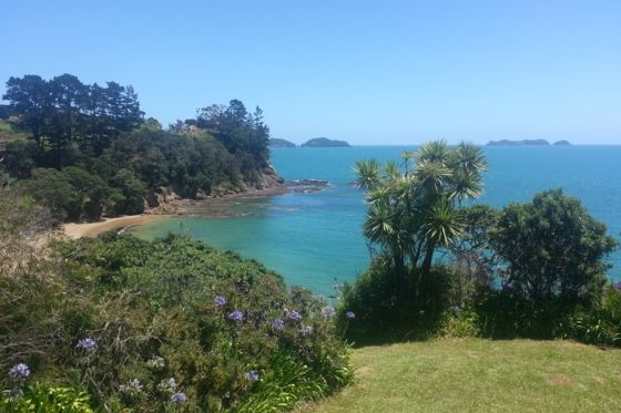 View - Waitete Bay bach or holiday home