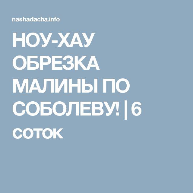 НОУ-ХАУ ОБРЕЗКА МАЛИНЫ ПО СОБОЛЕВУ! | 6 соток