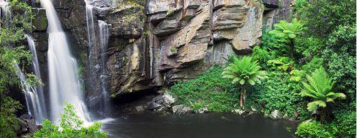 Phantom Falls, a hidden oasis. Otway Ranges, Great Ocean Road, Victoria.
