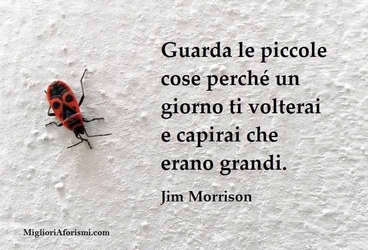 Jim Morrison - Frasi e Aforismi