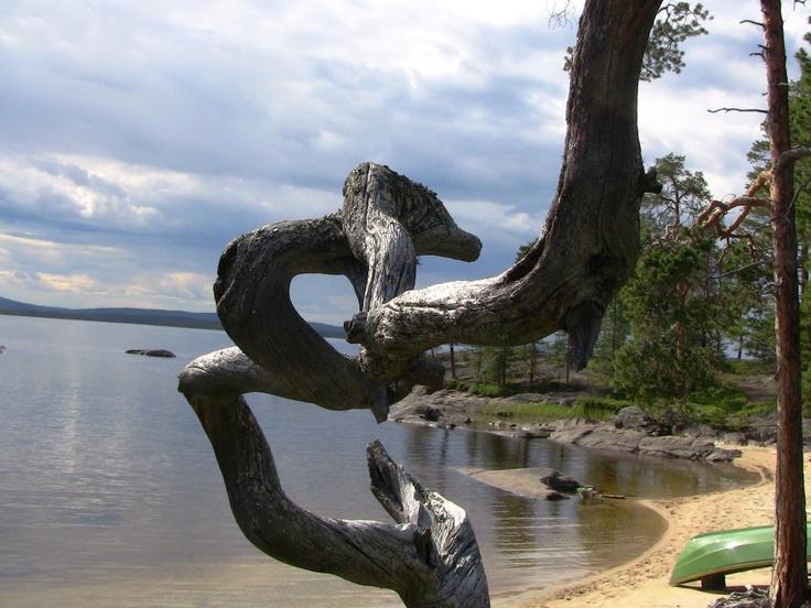 Lake Inari