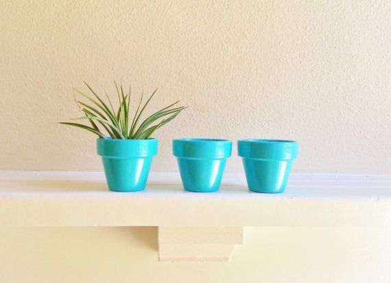 50 Best Bridal Shower Favor Ideas: mini planter pots (by redstone works)