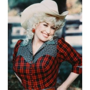 Dolly Parton. super easy costume to recreate  sc 1 st  Pinterest & 23 best costume party ideau0027s images on Pinterest | Carnival Costume ...