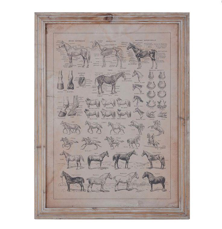 Horse picture in wooden frame £99 #horse #meyerandmarsh
