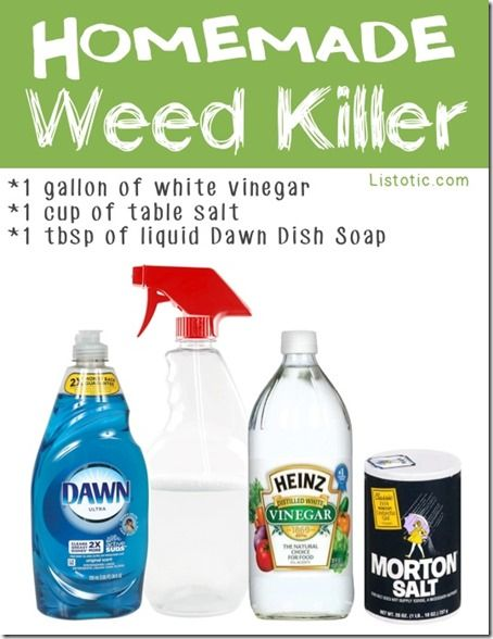17 best ideas about homemade weed killers on pinterest homemade weed spray weeds vinegar and - Fight weeds with organic solutions practical tips in the garden ...