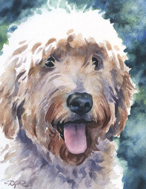 GOLDENDOODLE Dog Watercolor Signed Fine Art Print by Artist DJ Rogers