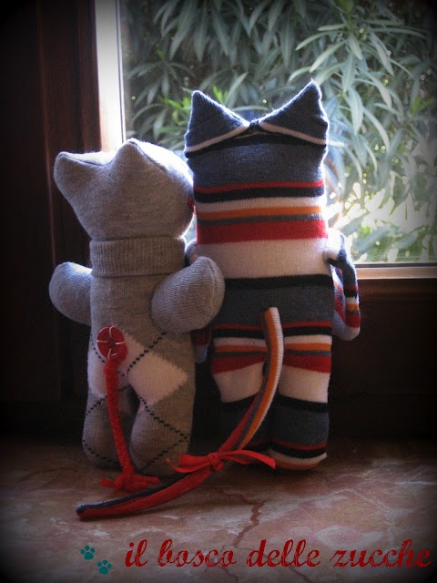 calzuccioli di gatto