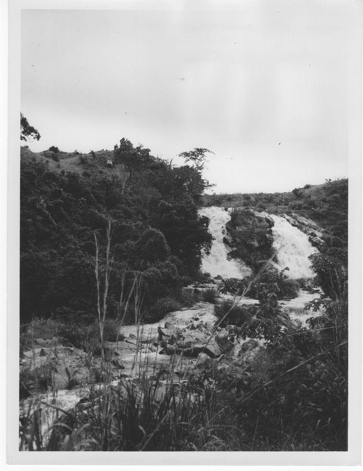Congo Belge rivière Shari à Bunia Territoire Irumu district Kibali-Ituri province Orientale, 1946