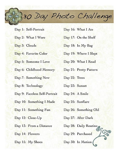 30 Day Photo Challenge...this would be cool for a down to earth practical everyday in the life of me mini album