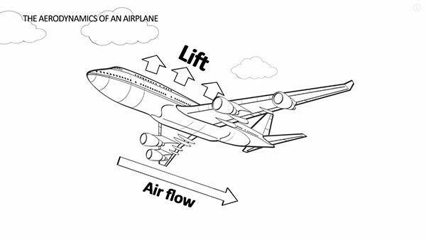 Warum fliegt überhaupt ein Flugzeug?