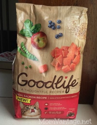 My cats are LOVING the GOODLIFE brand dry cat food in SALMON flavor!! #goodlifepet #collectivebias #shop  http://momvantage.net/a-cat-food-all-my-kitties-love-goodlifepet-collectivebias/