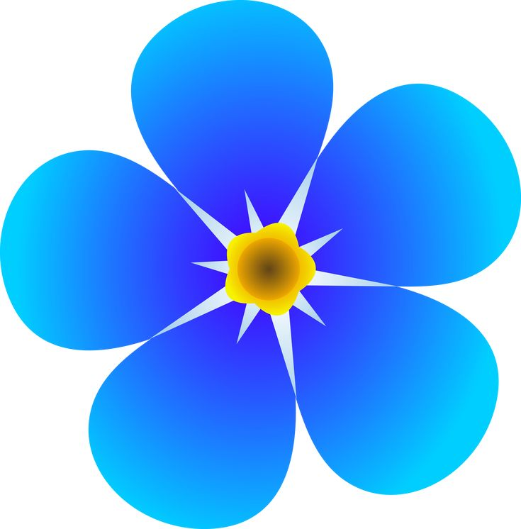 art flowers pictures  | Single Forget Me Not Flower - Free Clip Art