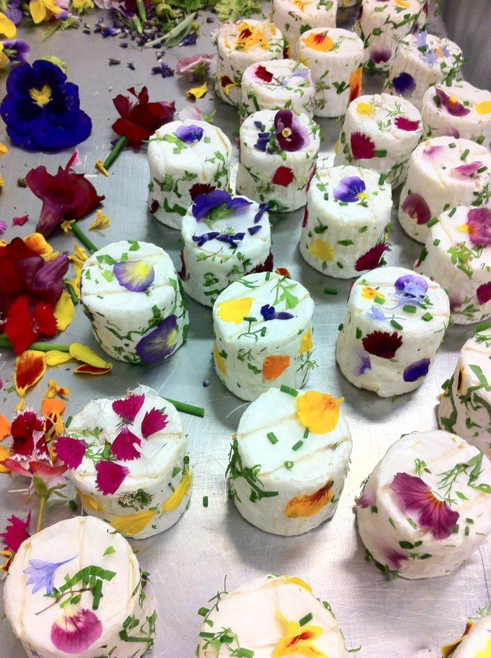 cheese and edible flowers
