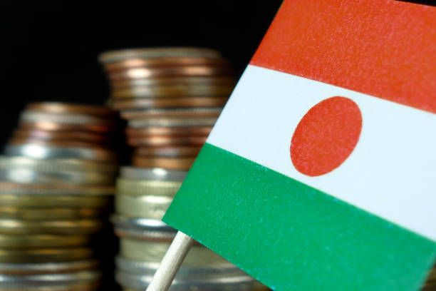niger flag waving with stack of money coins macro