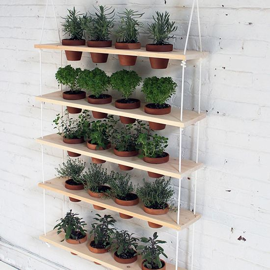 Make your space feel charming and fresh with these unique vertical garden ideas for urban dwellers.