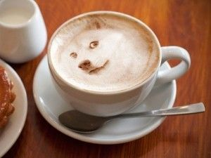 Not sure if that's wolf latte art... or Doge xD