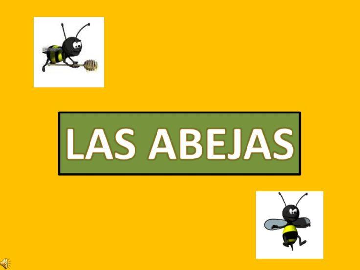Presentación en slideshare sobre el mundo de las abejas, con información sencilla para los niños. De Tintin.