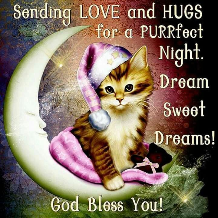 Sending Love And Hugs For A Purrfect Night. Sweet Dreams, God Bless You! goodnight goodnight quotes goodnight blessings goodnight images