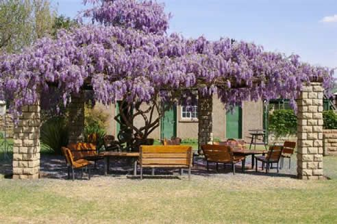 Lord Fraser Guest House Conference Venue in Wepener, Free State