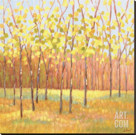 Yellow and Green Trees (center) Stretched Canvas Print by Libby Smart at Art.com