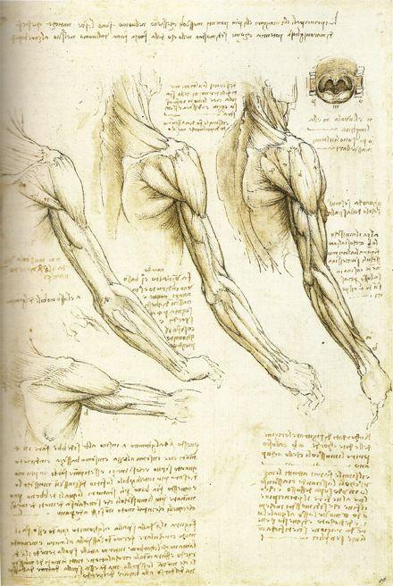 Leonardo da Vinci,   Discover the coolest shows in New York at www.artexperience...