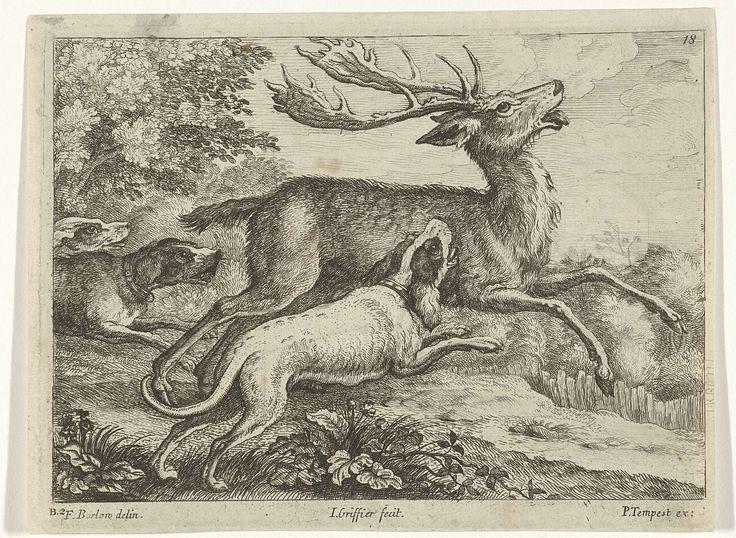 Jan Griffier (I) | Jacht op een hert, Jan Griffier (I), Pierce Tempest, 1655 - 1718 | Drie honden jagen op een hert in een bosrijke omgeving. Deze prent maakt deel uit van een serie van tien prenten met verschillende dieren.