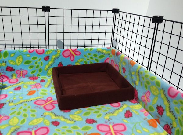PiggyBedSpreads.com Making Your Guinea Pig's World a Beautiful Place!