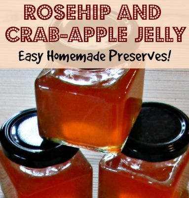 The 25 best crab apple recipes ideas on pinterest crab apple jam jelly recipe pickled crab - What to do with rosehips jelly and vinegar ...