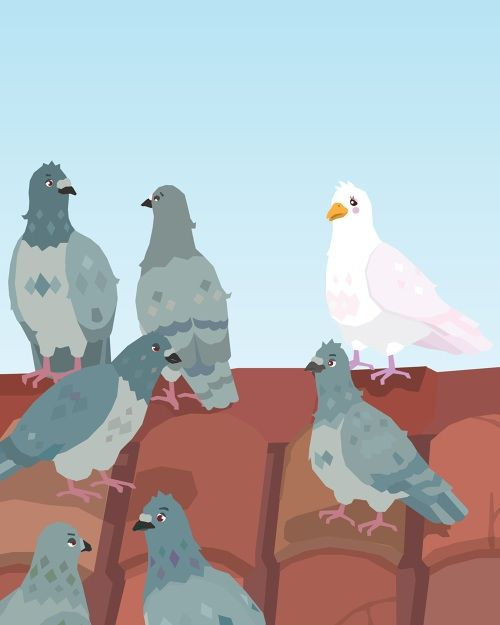 Romy the White Dove wants to belong somewhere and fit in with a group. Will she fit in and be accepted by pigeons as one of their own?