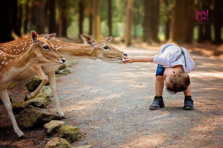 Jayden and the deers! photographer children Montreal www.justeciel.ca