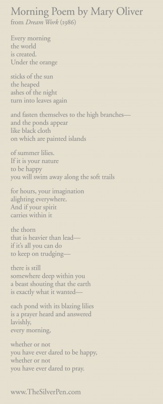 Morning Poem by Mary Oliver. Her nature poems are some of my favorites.