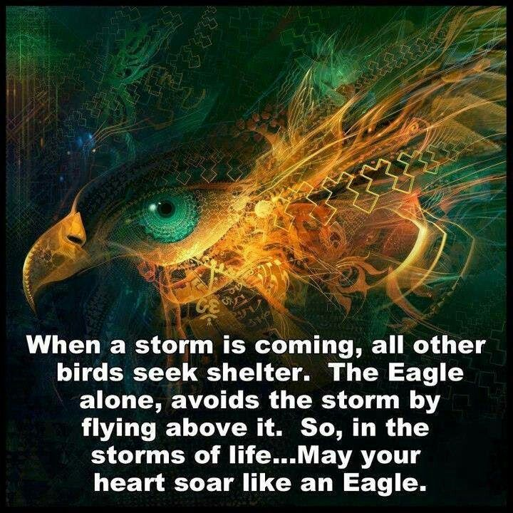 Soar above the storms