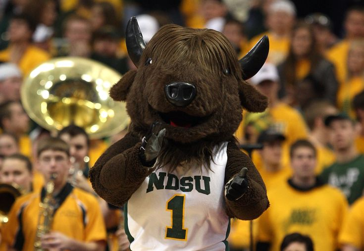 Fargo, North Dakota. It's a place - and it's home to the North Dakota State Bison.