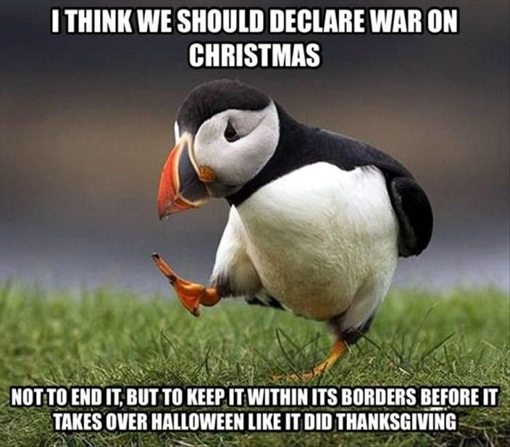 Unpopular opinion puffin actually has a popular opinion.
