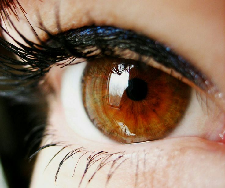Зрачки глаза по годам фото