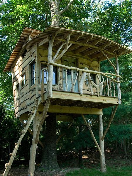 Best 25 tree houses ideas on pinterest awesome tree for Small tree house
