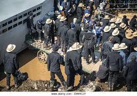 Amish men at a horse sale.