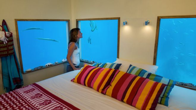 Sleeping in your own, private aquarium. Not too shabby. Find how where this is at http://www.suitcasesandstrollers.com/articles/view/underwater-hotels?l=all #GoogleUs #suitcasesandstrollers #travel #kids #underwater #hotels #fish #travelwithkids #familytravel #familyholidays #familyvacations