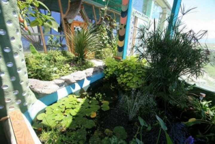 Tilapia pond inside an earthship earthships and other for Garden pool tilapia