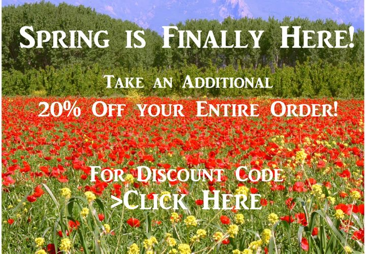 Spring is Finally Here - Save 20% OFF your Entire Order this Weekend. Click here for Discount Code: http://bit.ly/1gPOdtk  Great time to get a new pair of cycling shorts, a new jersey or coolmax socks!