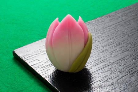 Japanese Sweets, チューリップ Tulip