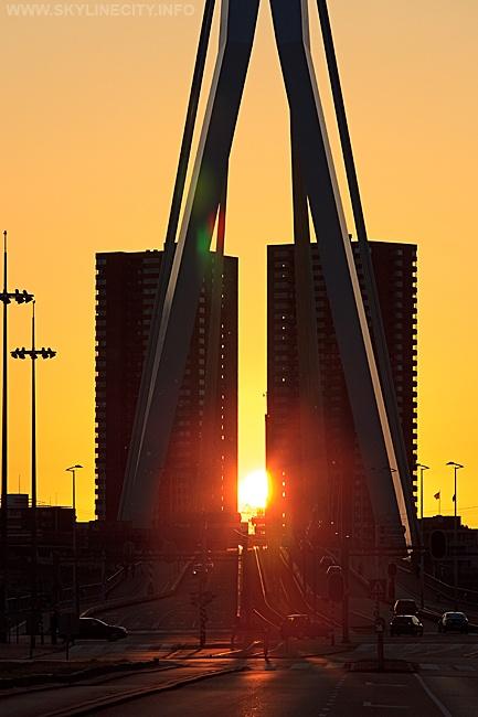 Hoge Heren #Rotterdam